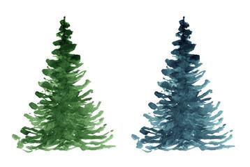 Fir tree. Watercolor hand drawn