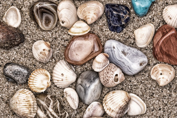 Summer sea theme with shells, wet colored stones and sand