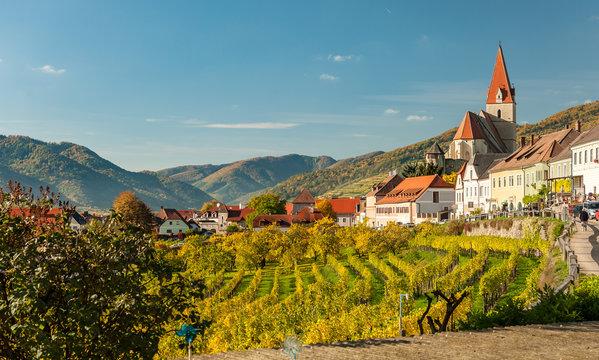 Weissenkirchen in der Wachau Austria vineyards in autumn