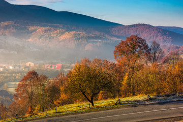 gorgeous foggy morning in autumn countryside. lovely rural scenery in mountainous area