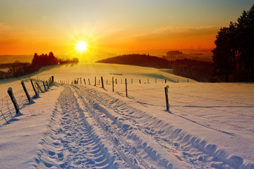 Winter sunset landscape with trees and field road.