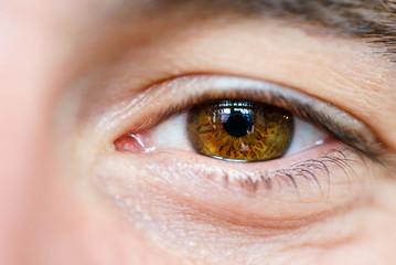 brown eyes of a man