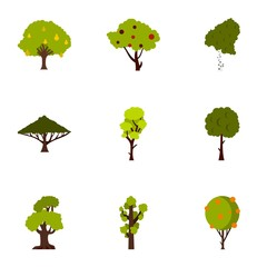 Types of trees icons set, flat style