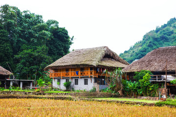 Traditional stilted house this charming home stay belongs to a local Tay family