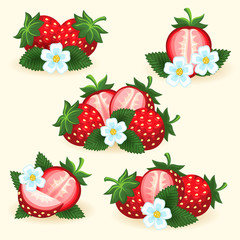 Strawberry freshness fruit set with fresh slice, leaves and flowers for logo and labels vector illustration