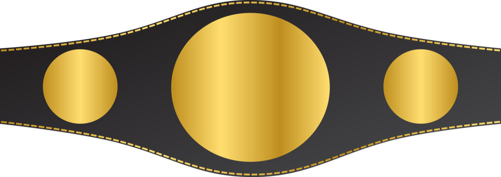 Pattern belt world champion martial arts vector isolated
