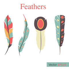 Colorful of abstract feathers illustration Vector set.