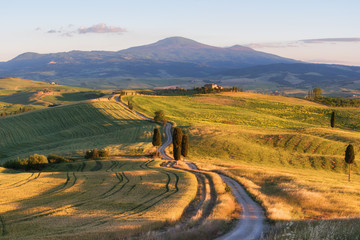 Fototapeta Magnificent spring landscape at sunset.Beautiful view of typical tuscan farm house, green wave hills, cypresses trees, magical sunlight, beautiful golden fields and meadows.Tuscany, Italy, Europe obraz