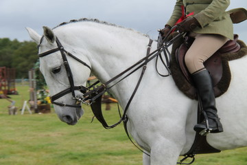 A Horse and Rider at a Show Jumping Event.