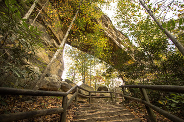 Foto op Canvas Natuur Park Kentucky State Parks Scenery. View and from under the stone arch in Natural Bridge State Park in Slade, Kentucky