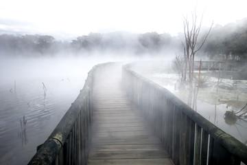 Bridge on a misty lake in Rotorua, New Zealand