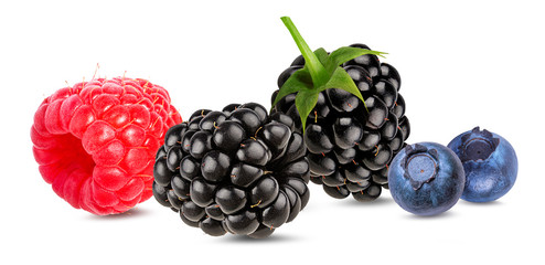 Berries collection. Raspberry, blueberry, blackberry  isolated on white.