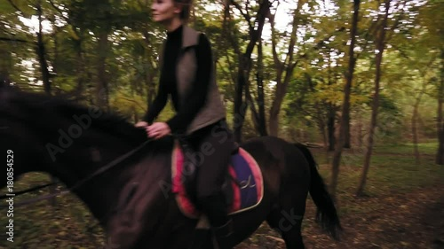 Horse riding in the autumn forest. Professional female rider gallop in park: young female rider on the horse on a shady forest gallop