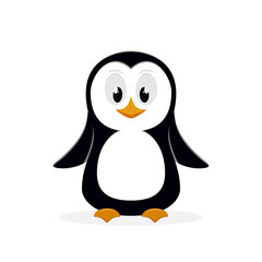 Penguin on white background