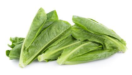 fresh cos lettuce isolated on white background