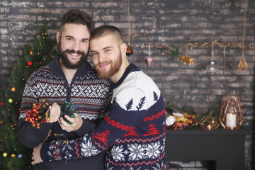 Portrait of happy gay couple with chain of lights at Christmas time