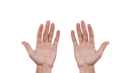 Two man hands. Isolated on white background Wall mural