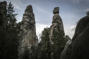 Tall Rocks rising among coniferous trees in the Adrspach rocks