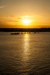 Sunset over harbour with gulls, portrait