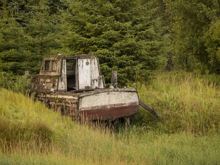 Neglected and Abandoned - Gustavus AK