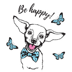 Vector illustration of a smiling dog. Flying butterfly. Be happy.
