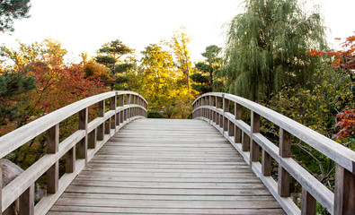 A wood curved bridge leading to an autumn garden with trees full of yellow and orange leaves.