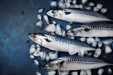 Raw mackerel fish with ingredients for cooking on a blue concrete or stone background. Selective focus. Top view.