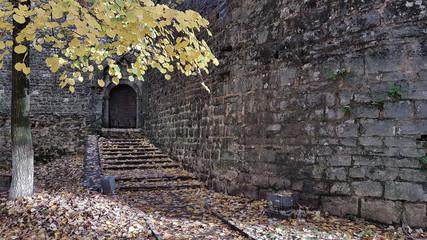 castle in Ioannina Greece autum season yellow red fallen leaves