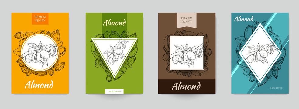 Set of template for branding, cover package, identity, banner, promote, card, label with almonds in retro vintage hand drawn, sketches, engraved style. Modern background. Vector illustration.