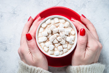 Cup of hot chocolate with marshmallow.