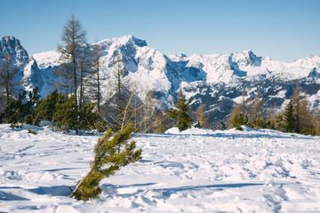 Austrian Winter Wonderland, Österreich, Berge, Aplen, Schnee