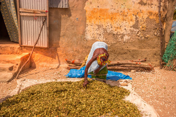 Old woman drying sort of tear herbs in a village from Senegal