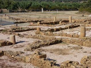 Caparra. Yacimiento Romano en Caceres, (Extremadura, España)