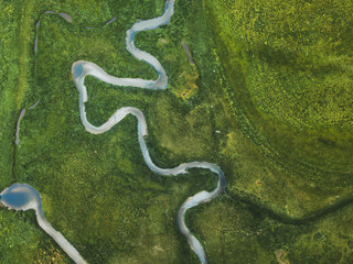 Tuinposter Luchtfoto aerial landscape of winding river in green field, top view of beautiful nature texture from drone