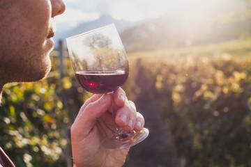 man tasting red wine in wineyard