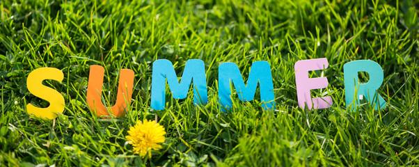 green grass and summer flowers