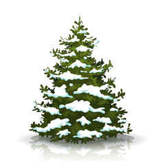 Christmas Pine Tree With Snow