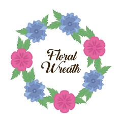 decorative floral wreath with beautiful blue and pink flowers icon over white background colorful design vector illustration