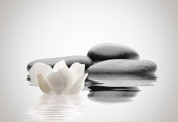 spa de piedras y flor
