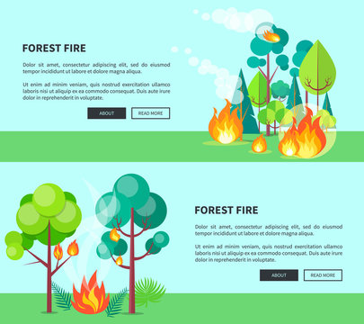 Forest Fire Set of Cartoon Posters with Text