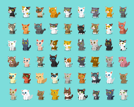 Different type of cartoon cats
