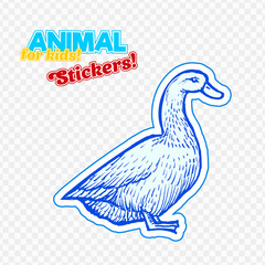 Farm animal duck in sketch style on colorful sticker. Isolated on transparent background. Can be used for cute coloring book for children. Include silhouette for paper cutting