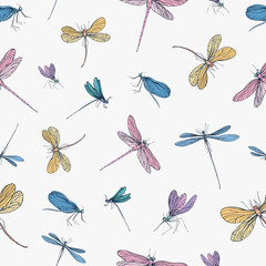 Seamless pattern with colorful hand drawn dragonflies on white background. Backdrop with elegant flying insects. Vector illustration in vintage style for wallpaper, textile print, wrapping paper.