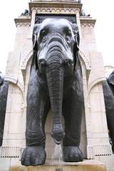 Spoed Fotobehang Fontaine la fontaine des éléphants à Chambéry