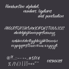 Modern calligraphy alphabet. Handwritten brush letters. Hand lettering font with ligatures