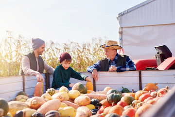 Farmers and boy at pumpkin farm