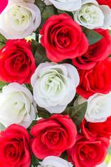 Rose flower plastic