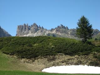 Roßzähne - Dolomiten
