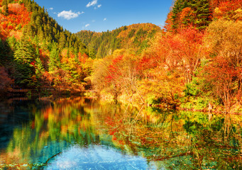 Autumn woods reflected in crystal water of the Five Flower Lake