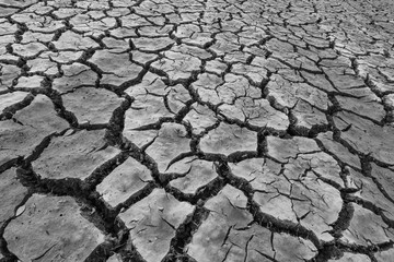 Black and white images in Southeast Asia crack down on drought.